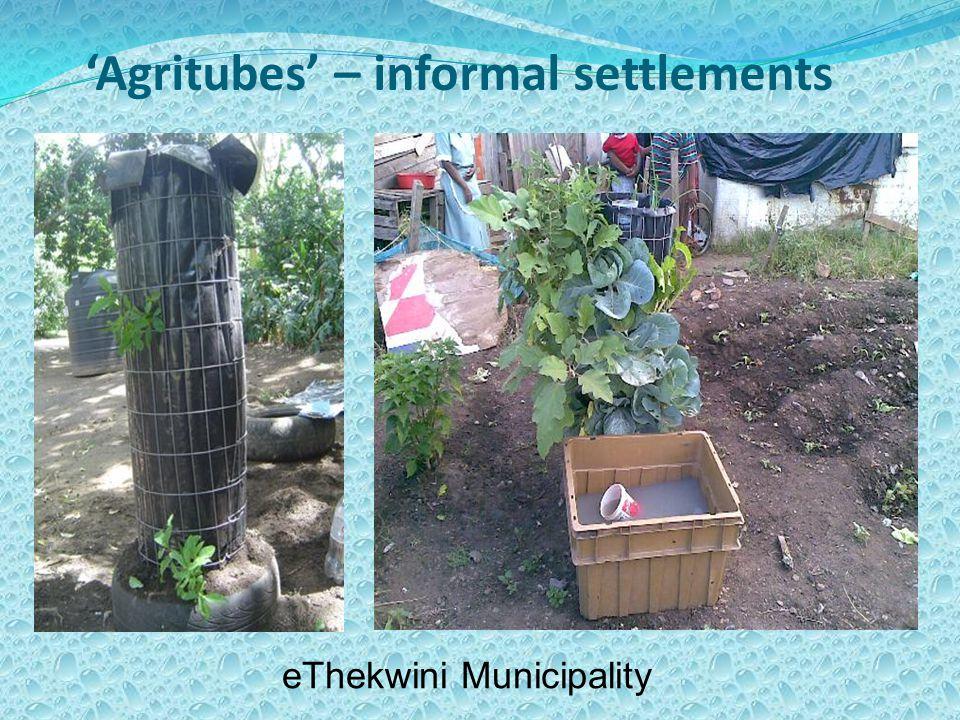'Agritubes' – informal settlements eThekwini Municipality