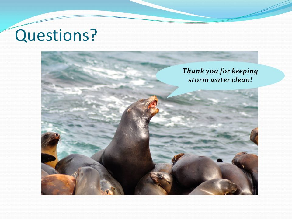 Questions? Thank you for keeping storm water clean!