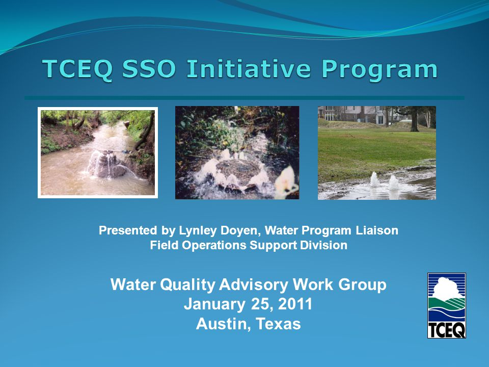 Presented by Lynley Doyen, Water Program Liaison Field Operations Support Division Water Quality Advisory Work Group January 25, 2011 Austin, Texas