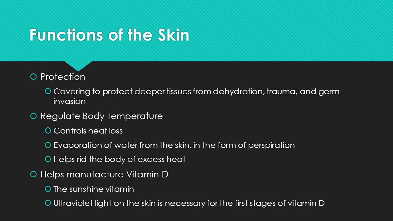 Third Degree Burns (Full Thickness Burns)  Epidermis, dermis, hypodermis, and all structures within are completely destroyed  Usually painless at site of burn due to destruction of sense receptors  Burn is gray-white, tan, brown, black, or deep cherry red  Surrounded by areas of 1 st & 2 nd degree burns that are painful  Treatments are numerous but will involve skin grafting of some sort, fluid replacement, and debridement  Epidermis, dermis, hypodermis, and all structures within are completely destroyed  Usually painless at site of burn due to destruction of sense receptors  Burn is gray-white, tan, brown, black, or deep cherry red  Surrounded by areas of 1 st & 2 nd degree burns that are painful  Treatments are numerous but will involve skin grafting of some sort, fluid replacement, and debridement