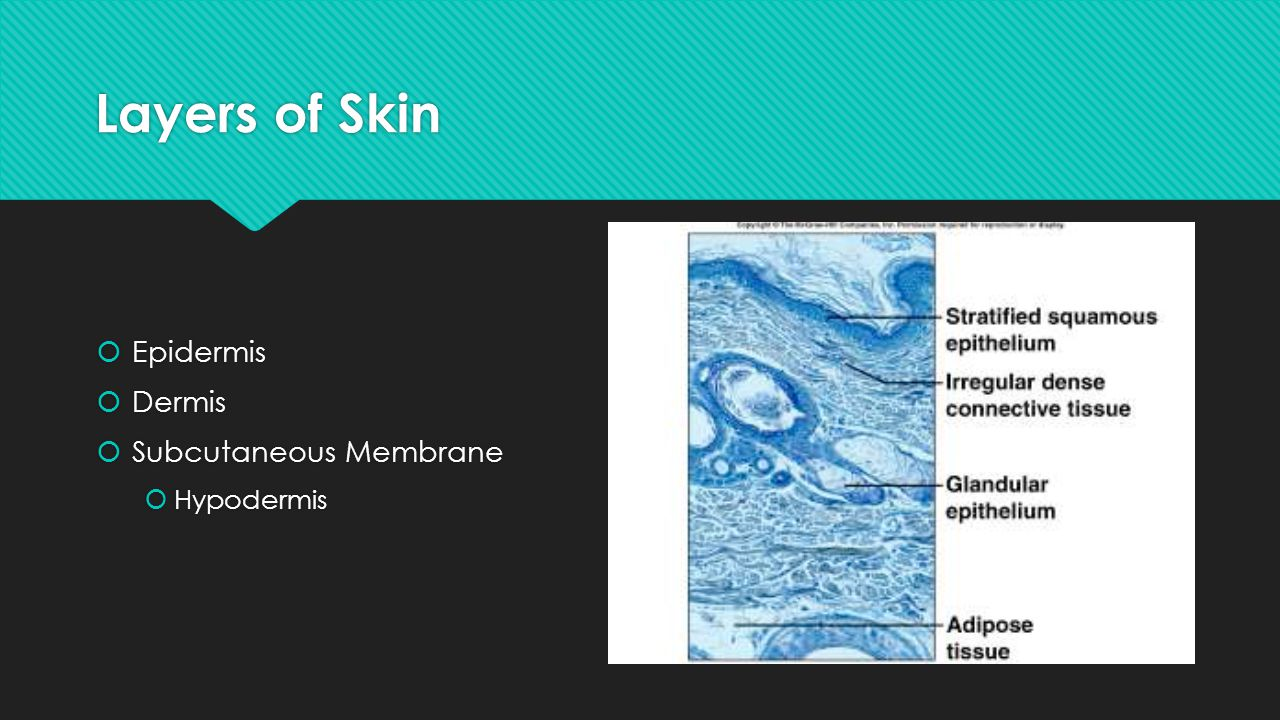 Contact Dermatitis  Itching, redness, and swelling of the skin, &blistering.
