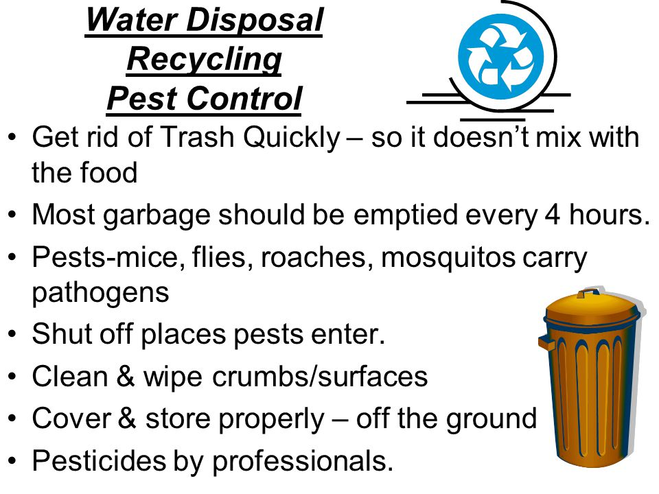 Water Disposal Recycling Pest Control Get rid of Trash Quickly – so it doesn't mix with the food Most garbage should be emptied every 4 hours. Pests-m