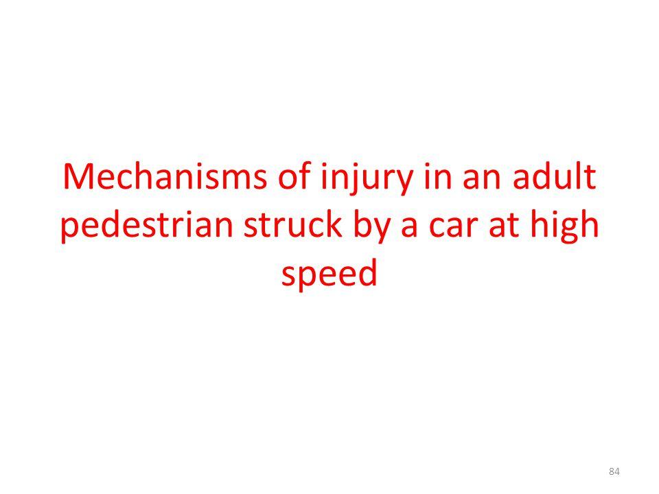 Mechanisms of injury in an adult pedestrian struck by a car at high speed 84