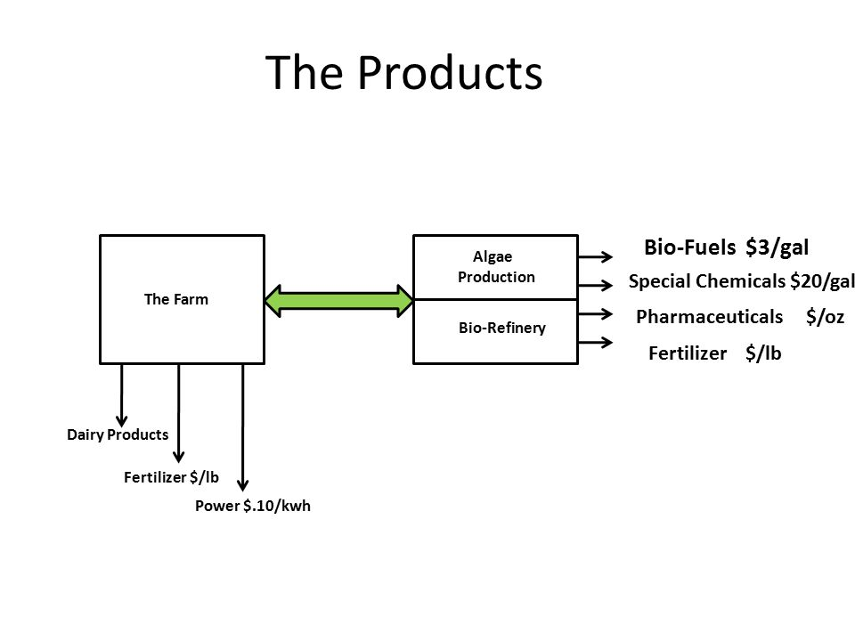 The Products The Farm Algae Production Bio-Refinery Bio-Fuels $3/gal Special Chemicals $20/gal Pharmaceuticals $/oz Fertilizer $/lb Dairy Products Power $.10/kwh