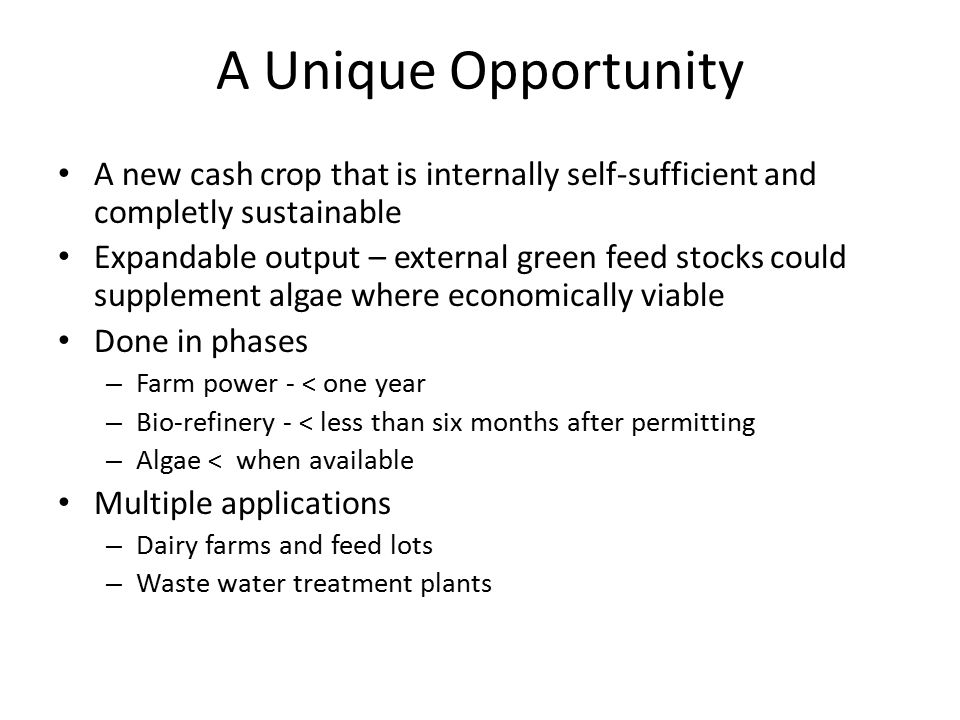 A Unique Opportunity A new cash crop that is internally self-sufficient and completly sustainable Expandable output – external green feed stocks could