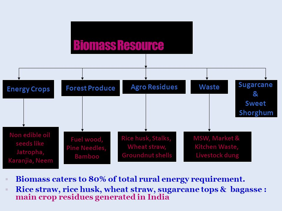  Biomass caters to 80% of total rural energy requirement.