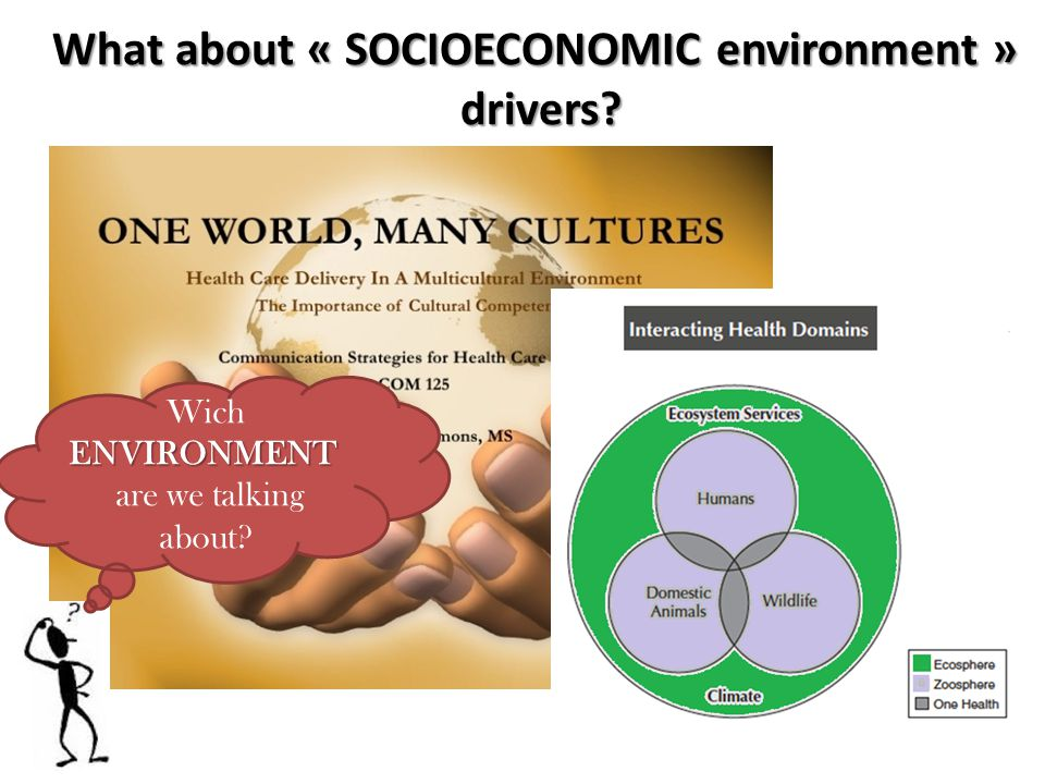 What about « SOCIOECONOMIC environment » drivers.