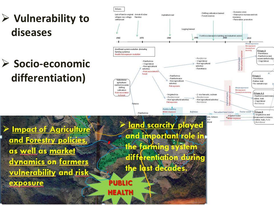  Vulnerability to diseases  Socio-economic differentiation)