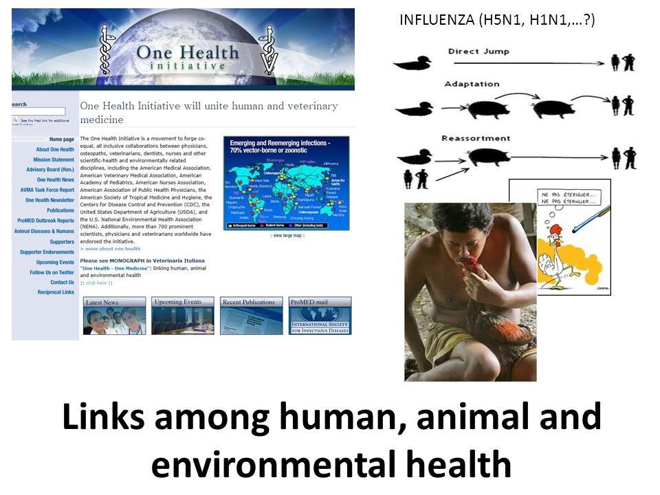 INFLUENZA (H5N1, H1N1,… ) Links among human, animal and environmental health