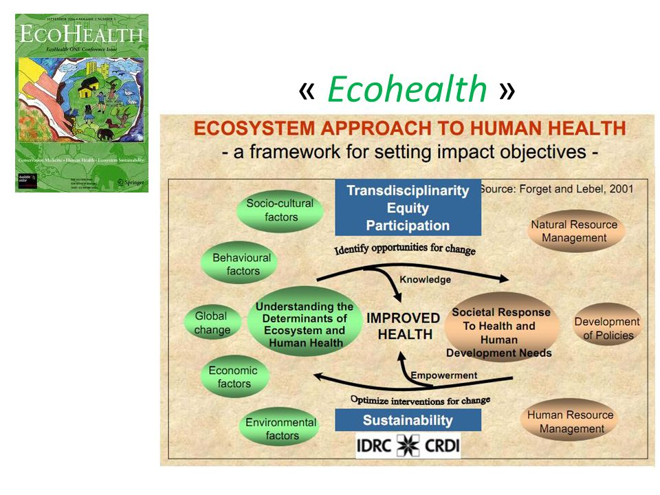 « Ecohealth »