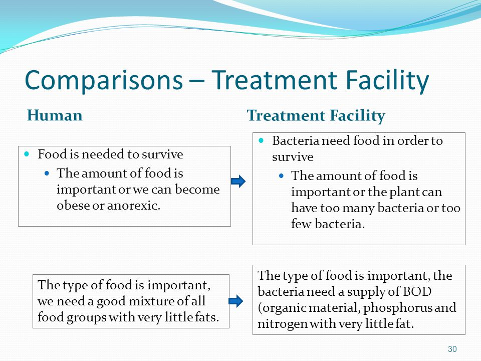 Comparisons – Treatment Facility Human Treatment Facility Food is needed to survive The amount of food is important or we can become obese or anorexic.