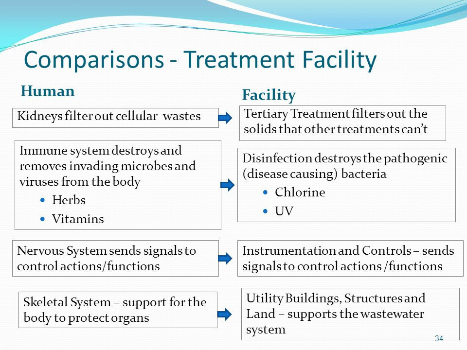 Comparisons - Treatment Facility Human Facility Kidneys filter out cellular wastes Tertiary Treatment filters out the solids that other treatments can't 34 Immune system destroys and removes invading microbes and viruses from the body Herbs Vitamins Disinfection destroys the pathogenic (disease causing) bacteria Chlorine UV Nervous System sends signals to control actions/functions Instrumentation and Controls – sends signals to control actions /functions Skeletal System – support for the body to protect organs Utility Buildings, Structures and Land – supports the wastewater system