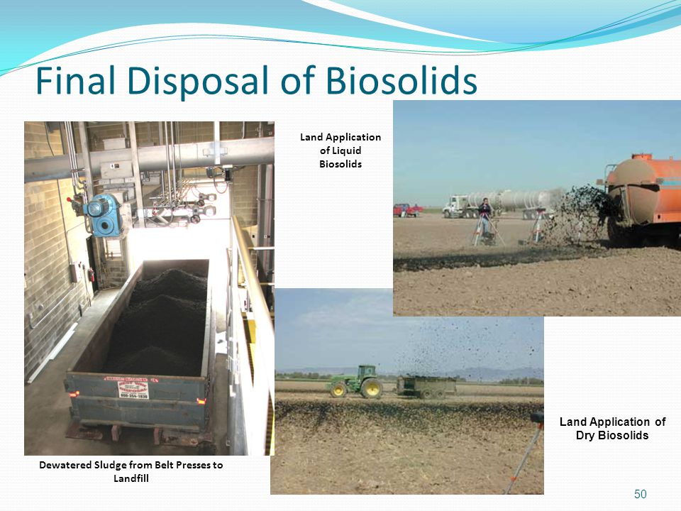 Final Disposal of Biosolids 50 Dewatered Sludge from Belt Presses to Landfill Land Application of Dry Biosolids Land Application of Liquid Biosolids