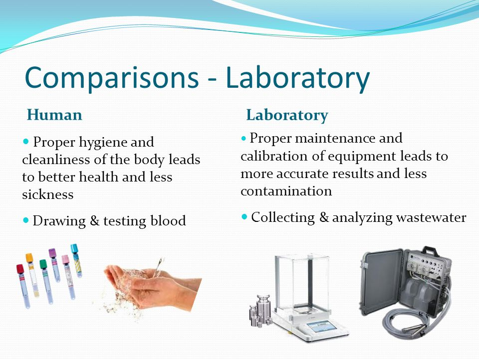 Comparisons - Laboratory Human Laboratory Proper hygiene and cleanliness of the body leads to better health and less sickness Drawing & testing blood Proper maintenance and calibration of equipment leads to more accurate results and less contamination Collecting & analyzing wastewater