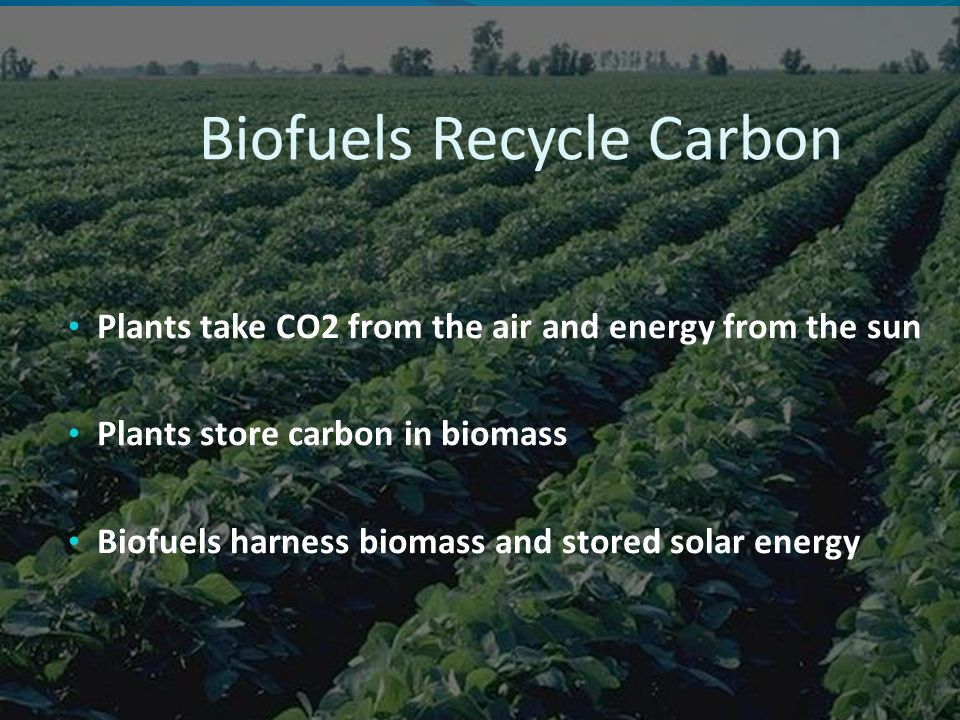 Plants take CO2 from the air and energy from the sun Plants store carbon in biomass Biofuels harness biomass and stored solar energy Biofuels Recycle Carbon