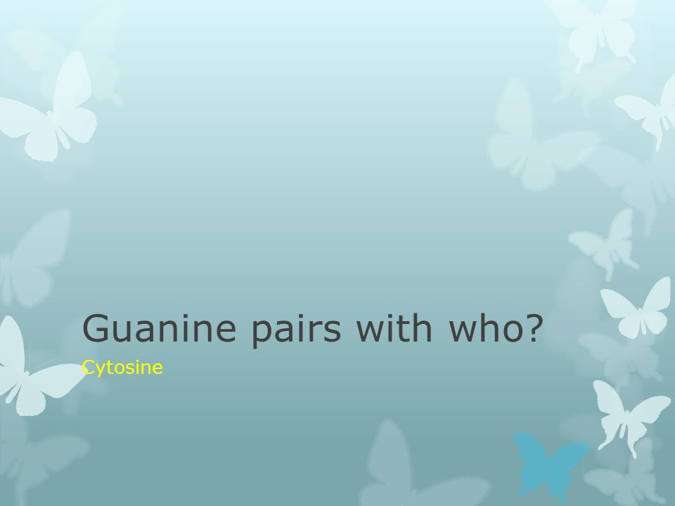 Guanine pairs with who? Cytosine