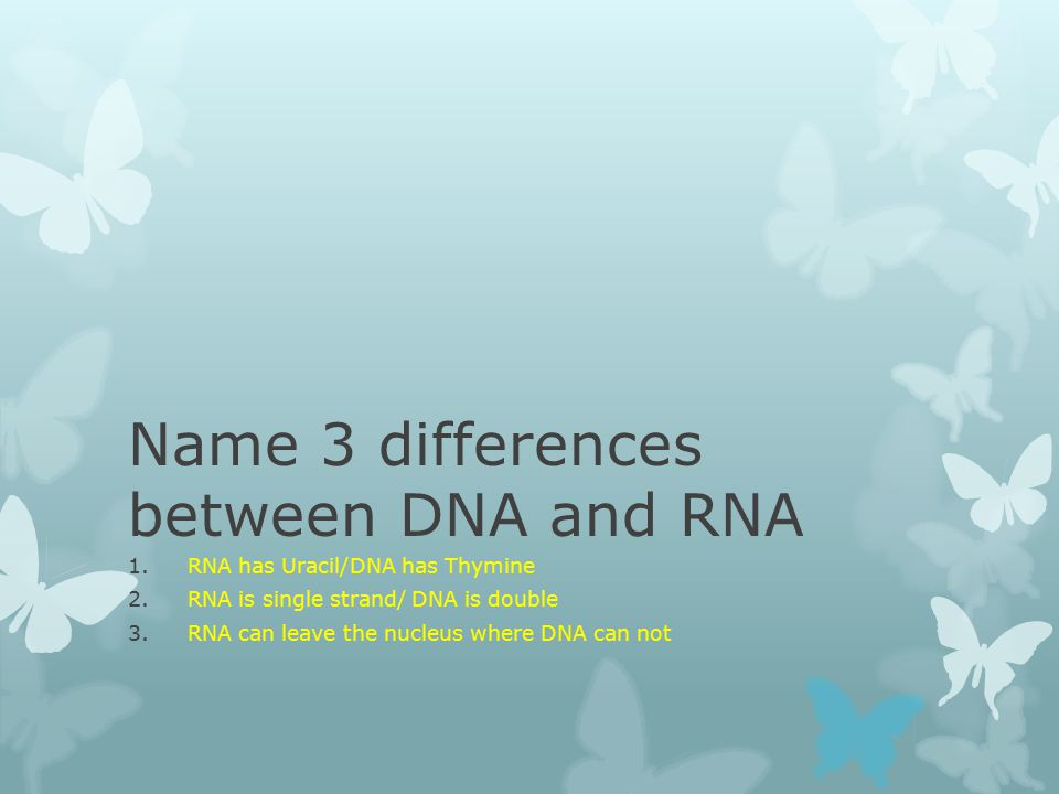 Name 3 differences between DNA and RNA 1.RNA has Uracil/DNA has Thymine 2.RNA is single strand/ DNA is double 3.RNA can leave the nucleus where DNA can not