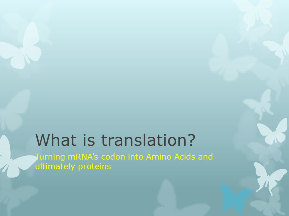 What is translation? Turning mRNA's codon into Amino Acids and ultimately proteins