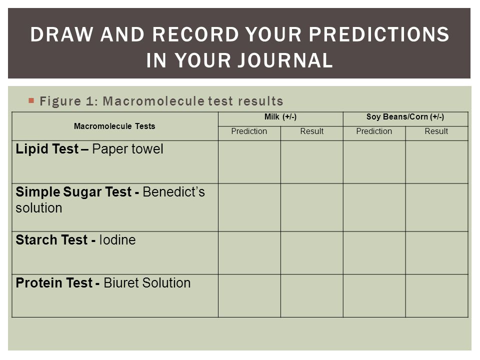  Figure 1: Macromolecule test results DRAW AND RECORD YOUR PREDICTIONS IN YOUR JOURNAL Macromolecule Tests Milk (+/-)Soy Beans/Corn (+/-) PredictionResultPredictionResult Lipid Test – Paper towel Simple Sugar Test - Benedict's solution Starch Test - Iodine Protein Test - Biuret Solution