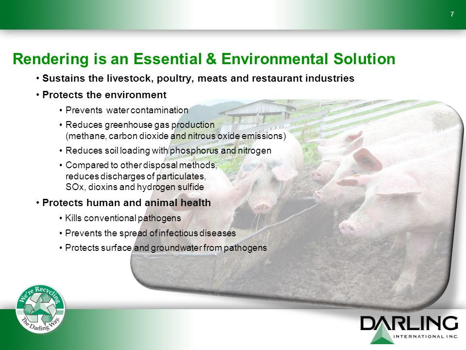 Rendering is an Essential & Environmental Solution Sustains the livestock, poultry, meats and restaurant industries Protects the environment Prevents water contamination Reduces greenhouse gas production (methane, carbon dioxide and nitrous oxide emissions) Reduces soil loading with phosphorus and nitrogen Compared to other disposal methods, reduces discharges of particulates, SOx, dioxins and hydrogen sulfide Protects human and animal health Kills conventional pathogens Prevents the spread of infectious diseases Protects surface and groundwater from pathogens 7