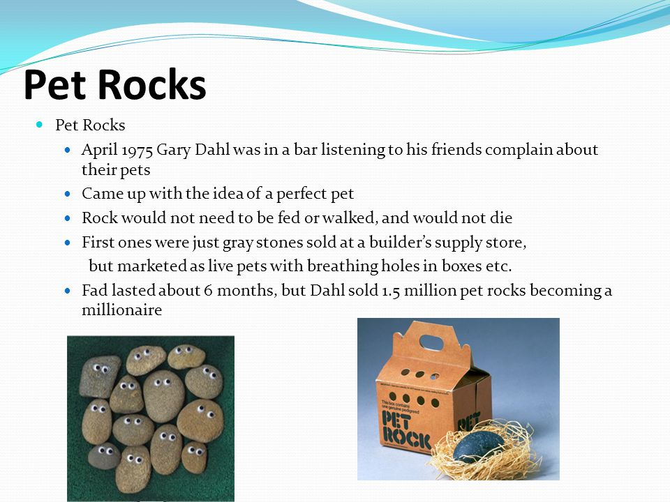 Pet Rocks April 1975 Gary Dahl was in a bar listening to his friends complain about their pets Came up with the idea of a perfect pet Rock would not need to be fed or walked, and would not die First ones were just gray stones sold at a builder's supply store, but marketed as live pets with breathing holes in boxes etc.