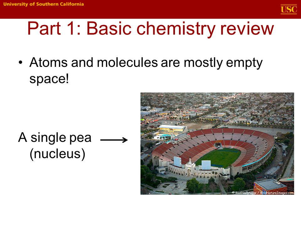 Part 1: Basic chemistry review Atoms and molecules are mostly empty space! A single pea (nucleus)