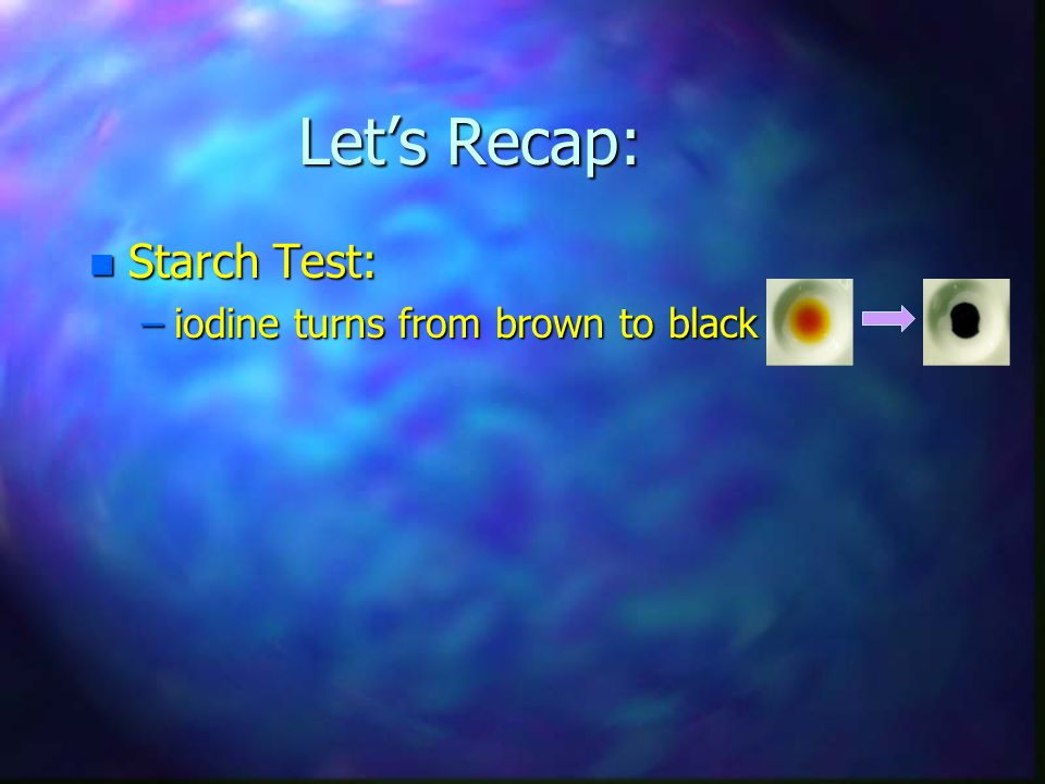 Let's Recap: n Starch Test: –iodine turns from brown to black