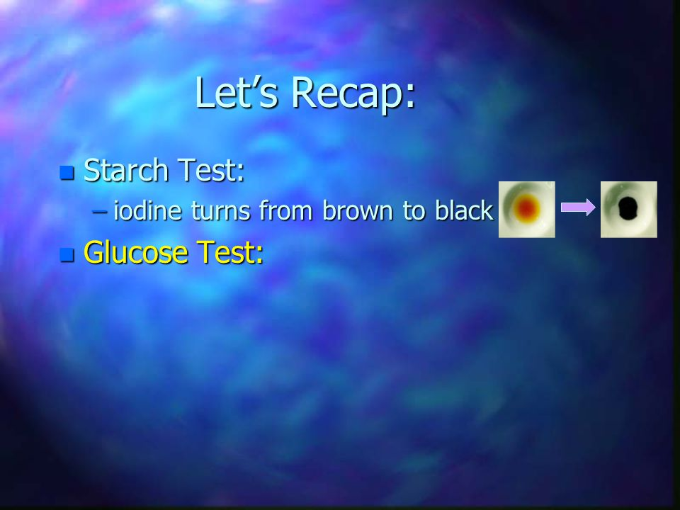Let's Recap: n Starch Test: –iodine turns from brown to black n Glucose Test: