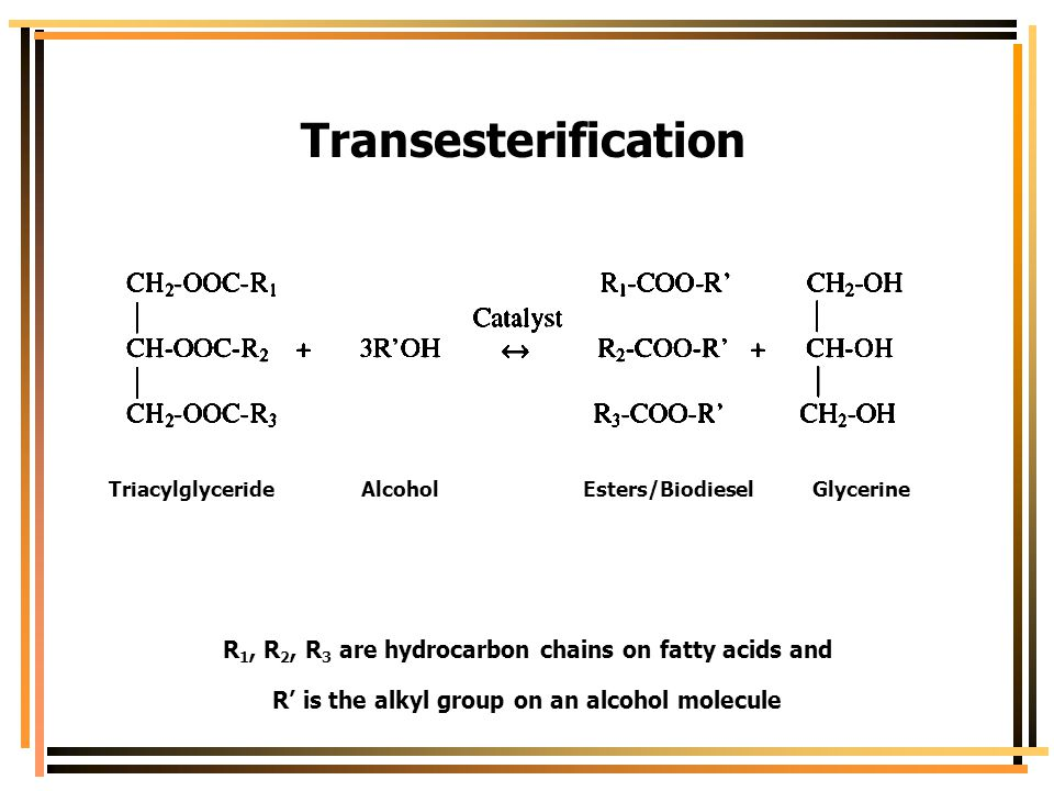 Transesterification R 1, R 2, R 3 are hydrocarbon chains on fatty acids and R' is the alkyl group on an alcohol molecule Triacylglyceride Alcohol Este