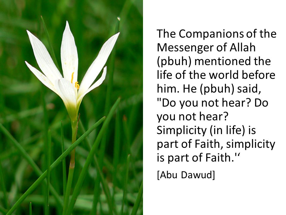 The Companions of the Messenger of Allah (pbuh) mentioned the life of the world before him.