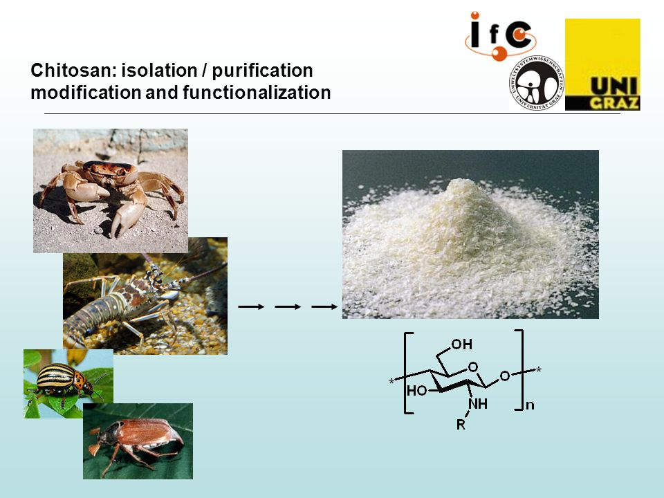 Chitosan: isolation / purification modification and functionalization