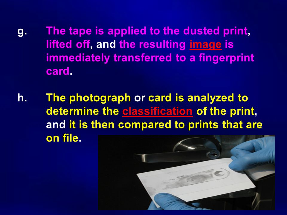 g. The tape is applied to the dusted print, lifted off, and the resulting image is immediately transferred to a fingerprint card. h. The photograph or