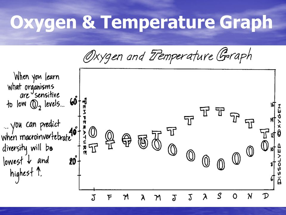 Oxygen & Temperature Graph