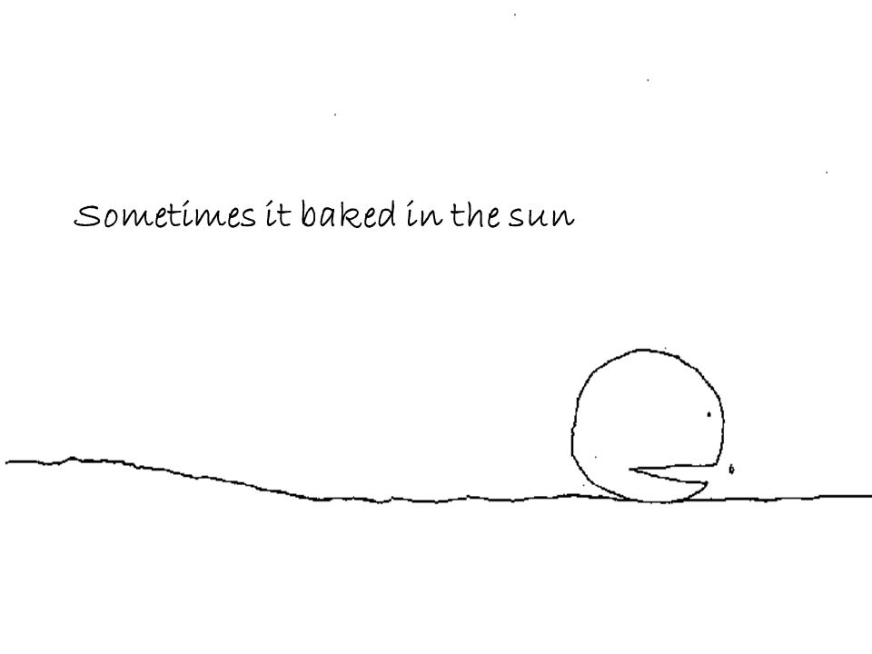 Sometimes it baked in the sun