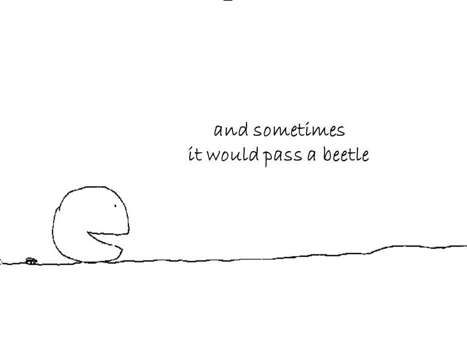 and sometimes it would pass a beetle