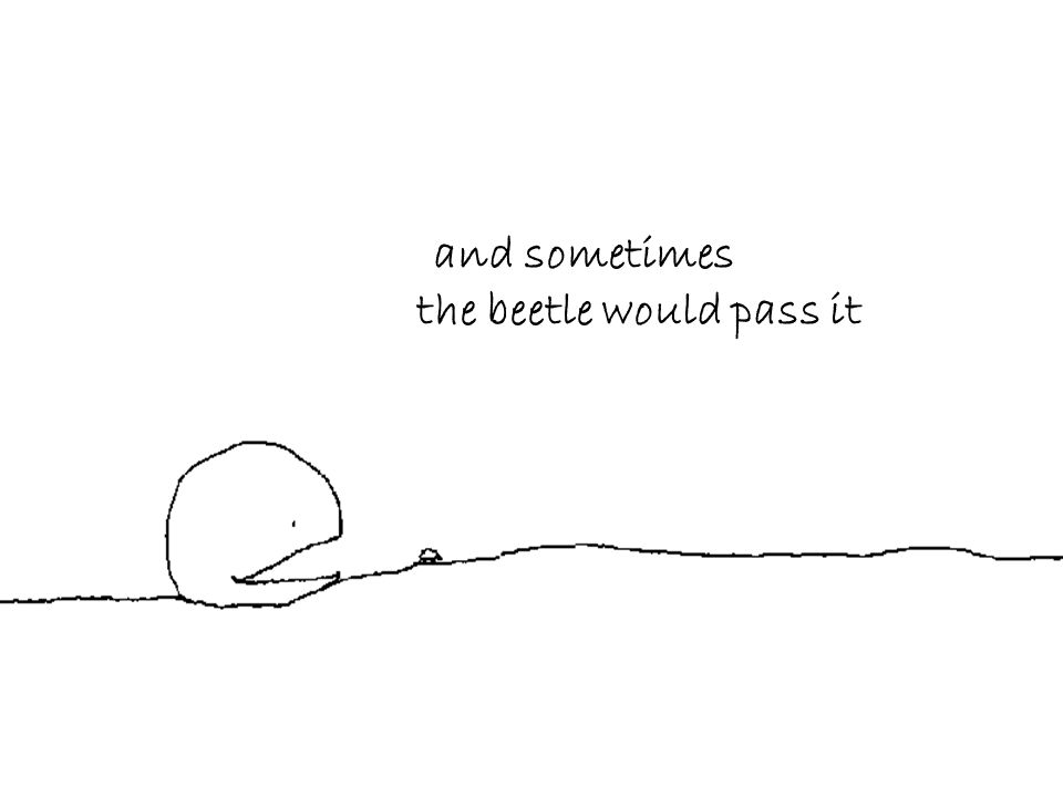 and sometimes the beetle would pass it