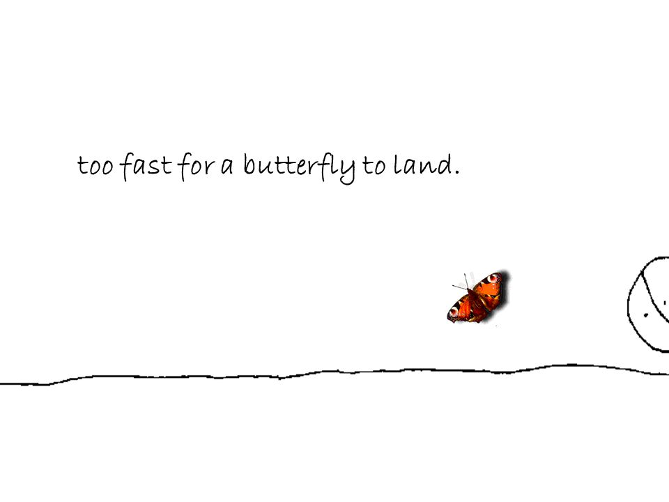 too fast for a butterfly to land.