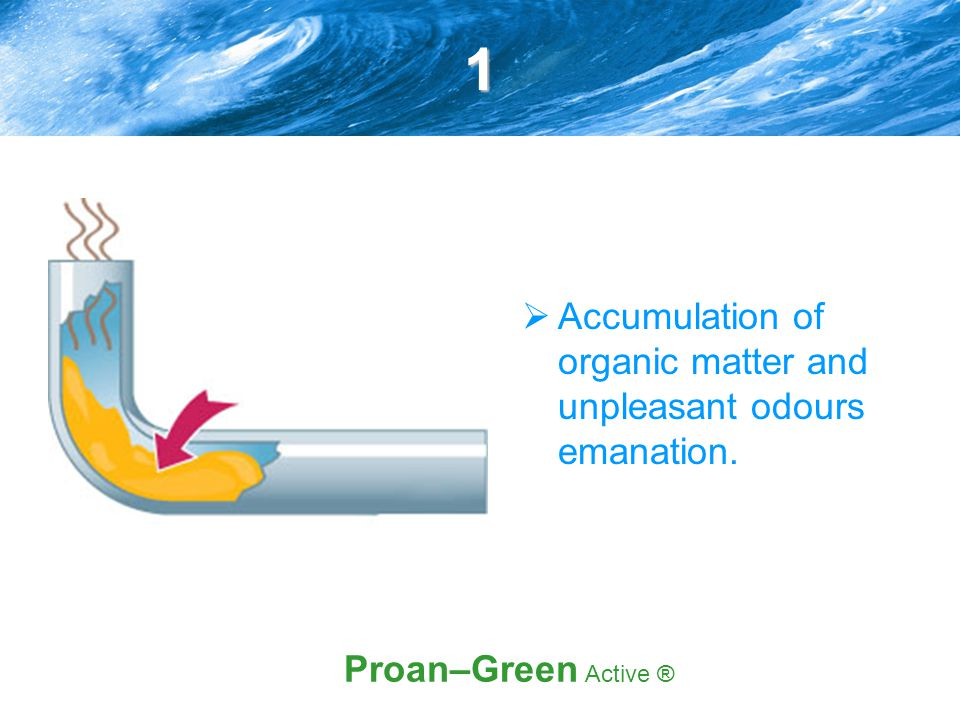 1  Accumulation of organic matter and unpleasant odours emanation. Proan–Green Active ®
