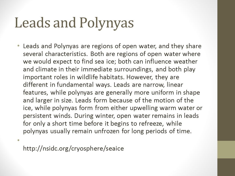 Leads and Polynyas Leads and Polynyas are regions of open water, and they share several characteristics.