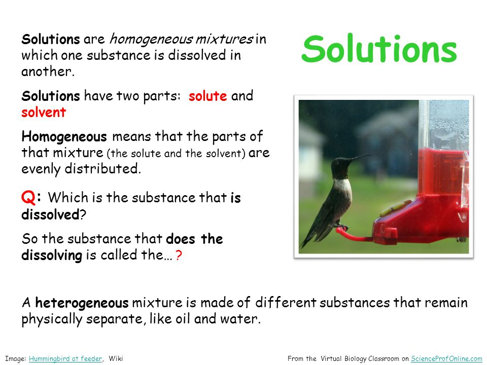 Solutions Solutions are homogeneous mixtures in which one substance is dissolved in another.