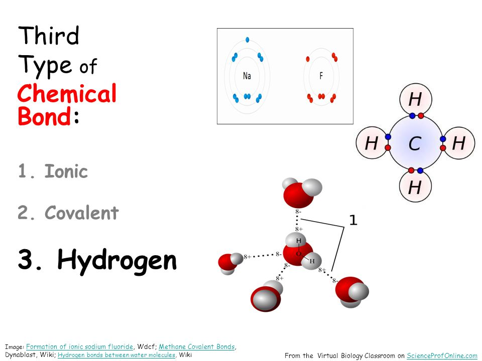 Third Type of Chemical Bond: 1. Ionic 2. Covalent 3.