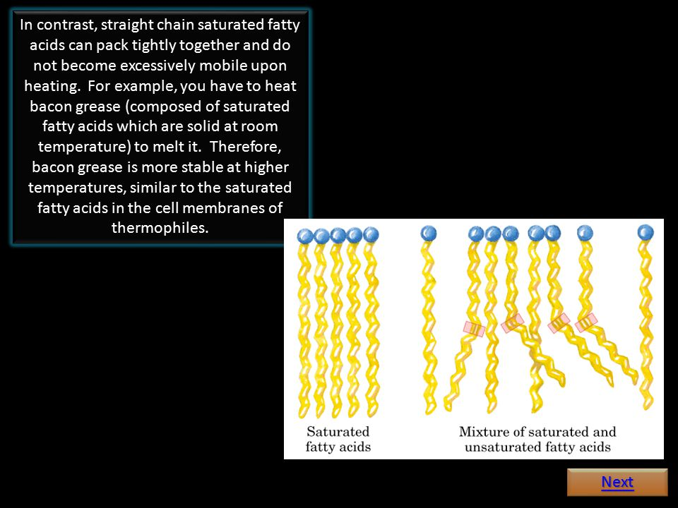 In contrast, straight chain saturated fatty acids can pack tightly together and do not become excessively mobile upon heating.