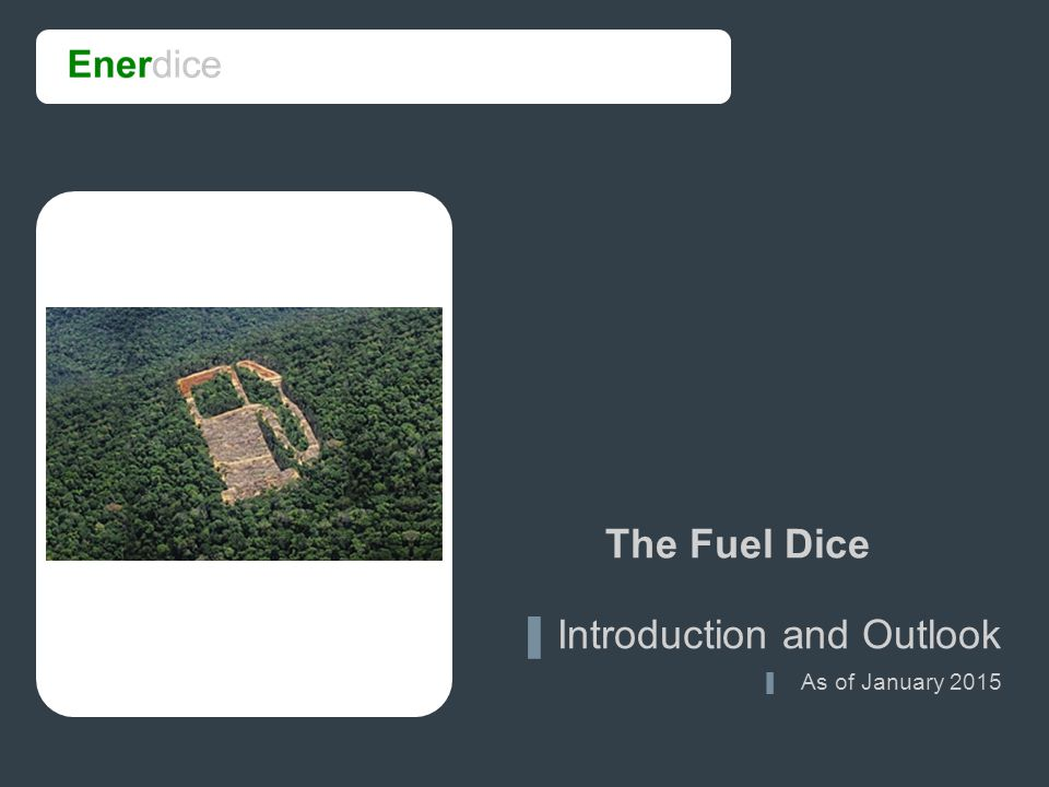 1 The Fuel Dice ▐ Introduction and Outlook ▐ As of January 2015