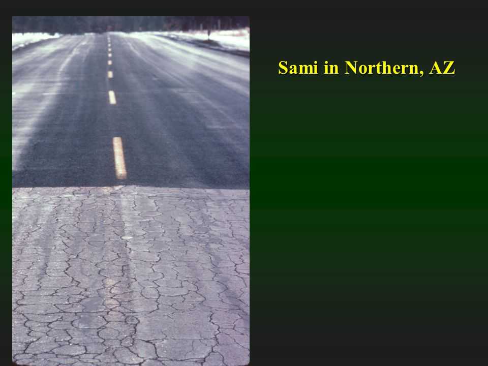 Sami in Northern, AZ