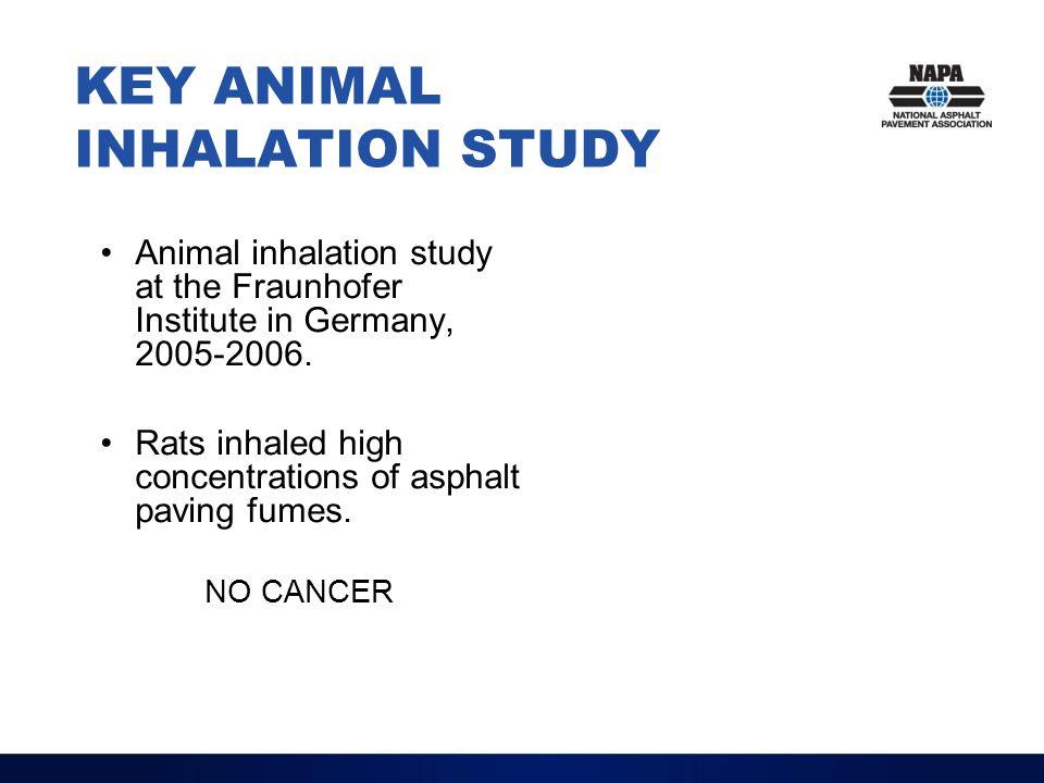 KEY ANIMAL INHALATION STUDY Animal inhalation study at the Fraunhofer Institute in Germany, 2005-2006. Rats inhaled high concentrations of asphalt pav
