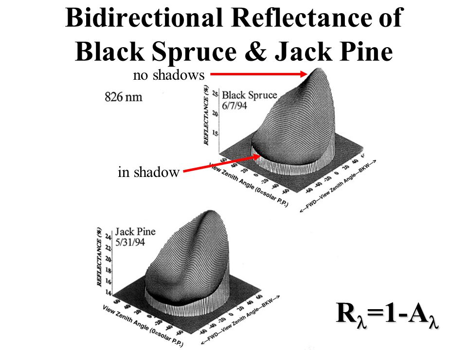 Bidirectional Reflectance of Black Spruce & Jack Pine in shadow no shadows R =1-A R =1-A