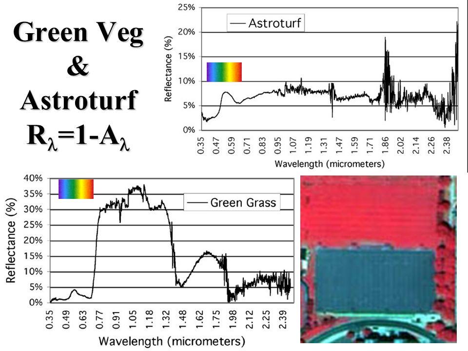 R =1-A Green Veg & Fall Colors R =1-A