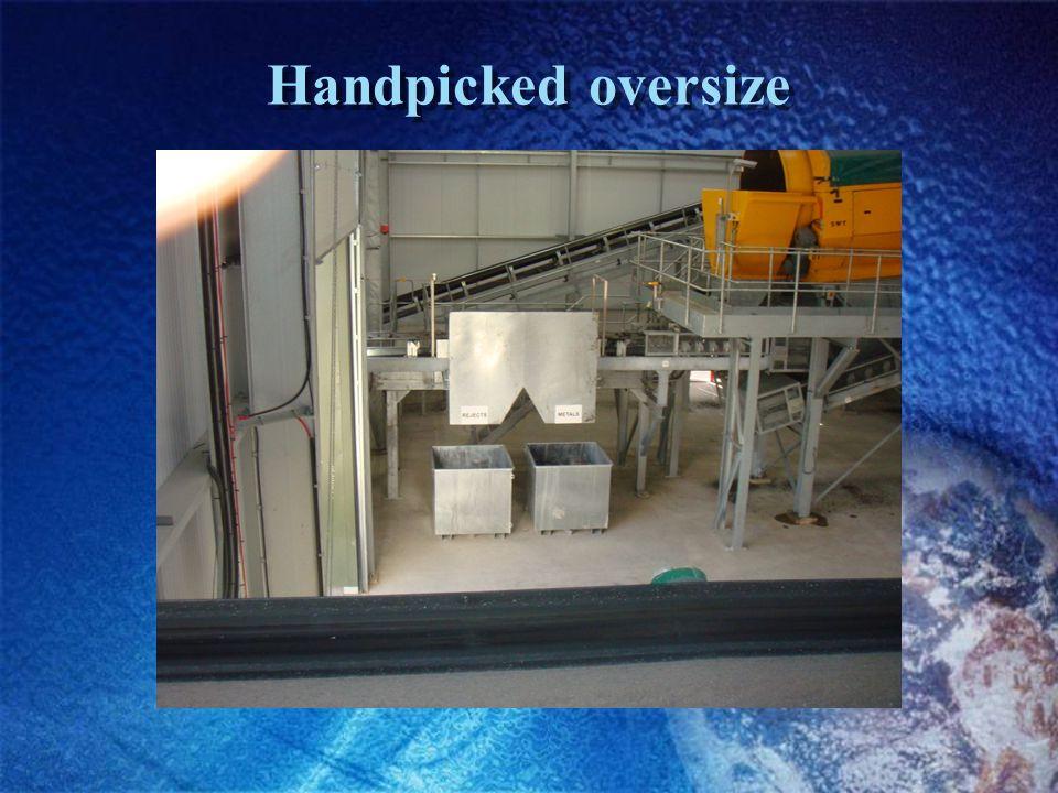 Handpicked oversize
