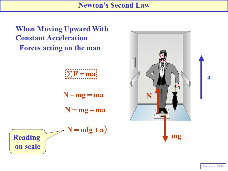 N mg a When Moving Upward With Constant Acceleration Forces acting on the man Reading on scale Newton's Second Law The Laws of Motion