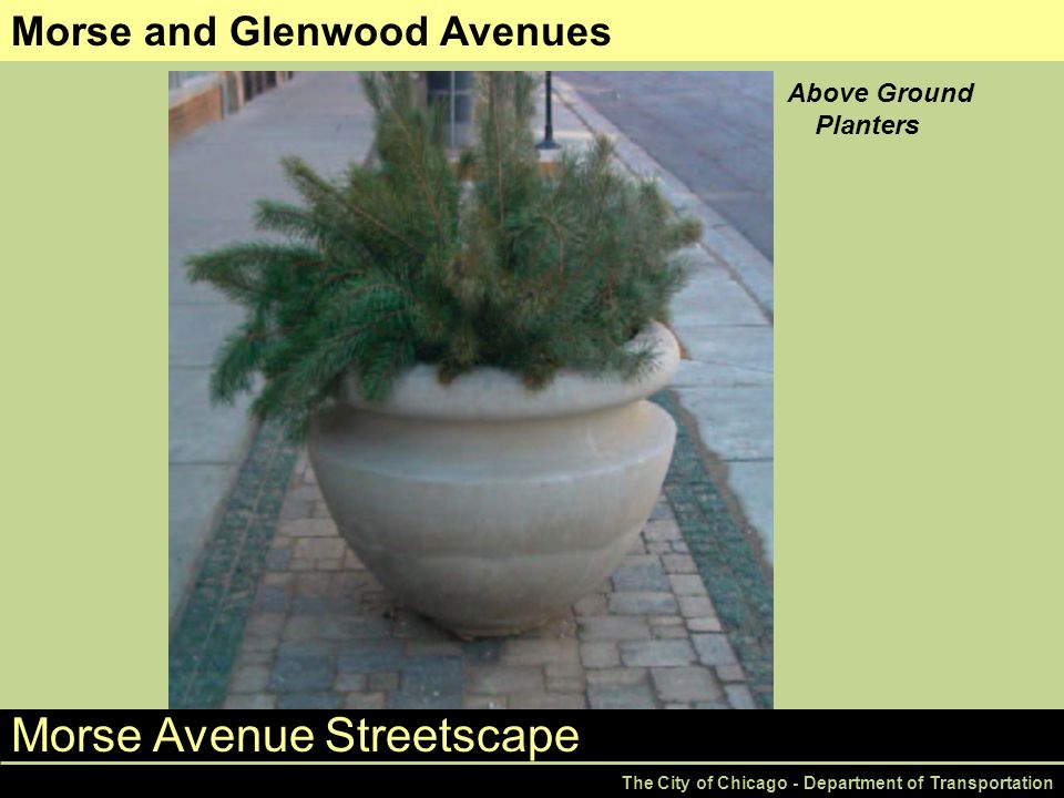 Morse Avenue Streetscape The City of Chicago - Department of Transportation Morse and Glenwood Avenues Above Ground Planters